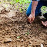 POSAO U NEMAČKOJ – Potrebni radnici za održavanje zelenih površina – OBA POLA – 10€ – 13€ SATNICA