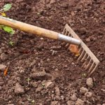 POSAO NEMAČKA – ČIŠĆENJE DVORIŠTA – obezbeđen smeštaj za radnike