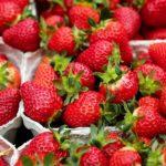 Posao u Nemačkoj za oba pola – Sortiranje voća i povrća