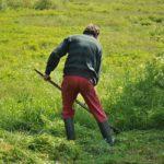 POSAO U NEMACKOJ – POSAO BASTOVAN – Potreban radnik za održavanje privatnog imanja – NISU POTREBNE KVALIFIKACIJE