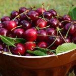 POSLOVI BRANJE VOCA U INOSTRANSTVU – Potrebno 20 radnica – plata 1.000 EVRA – jagode, trešnje, višnje