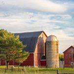 POSLOVI NA FARMAMA U INOSTRANSTVU – Mogu se prijaviti i oni BEZ iskustva u ovim poslovima