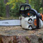 POSLOVI U  INOSTRANSTVU – Potrebni su radnici za rad u šumi