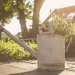 FIZICKI RADNICI POSAO NEMACKA – Potrebni radnici za održavanje vrta / dvorišta