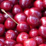 Sezonski poslovi branje voća 2020 – PRIJAVE SU U TOKU – 1.300€