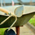 POSAO BAŠTOVANA U NEMAČKOJ – Potrebni radnici / radnice – sadnja, košenje, rezanje i kopanje